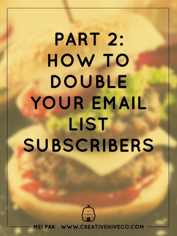 Part 2: How to double your email list subscribers